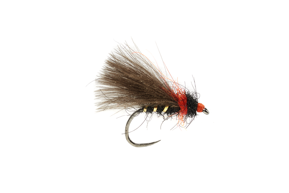 Roza's Bibio Caddis Barbless