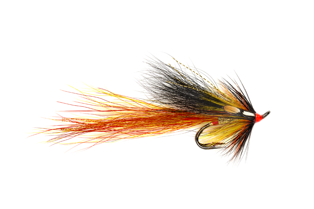 Cascade Willie Gunn Gold