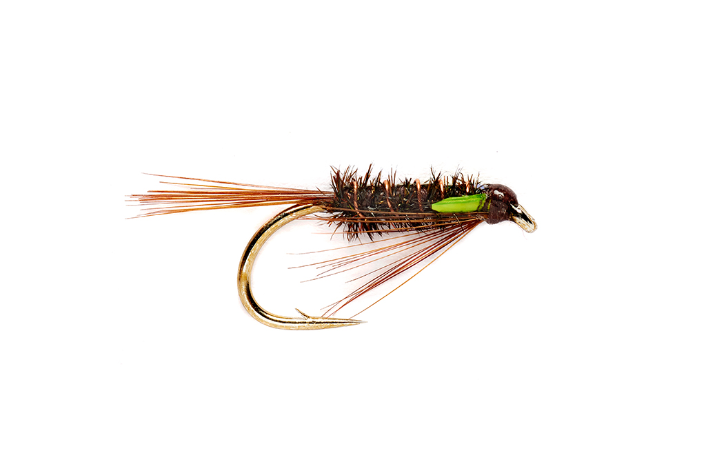 Green Cheeked Diawl Bach