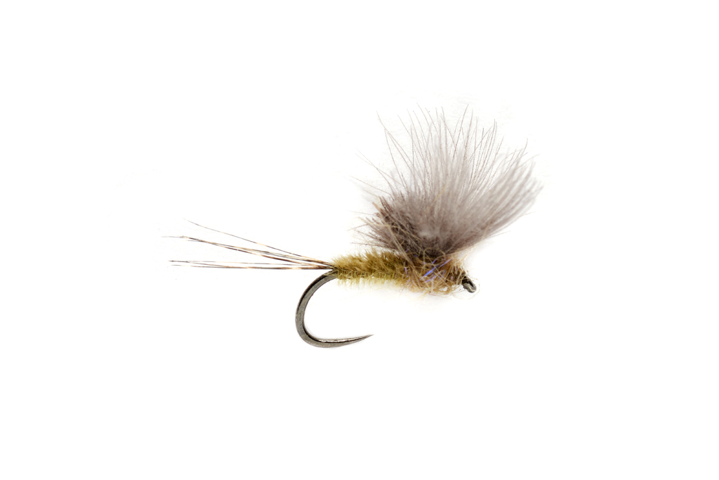 McPhail CdC Olive Barbless