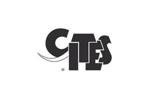 CITES Shipping Application