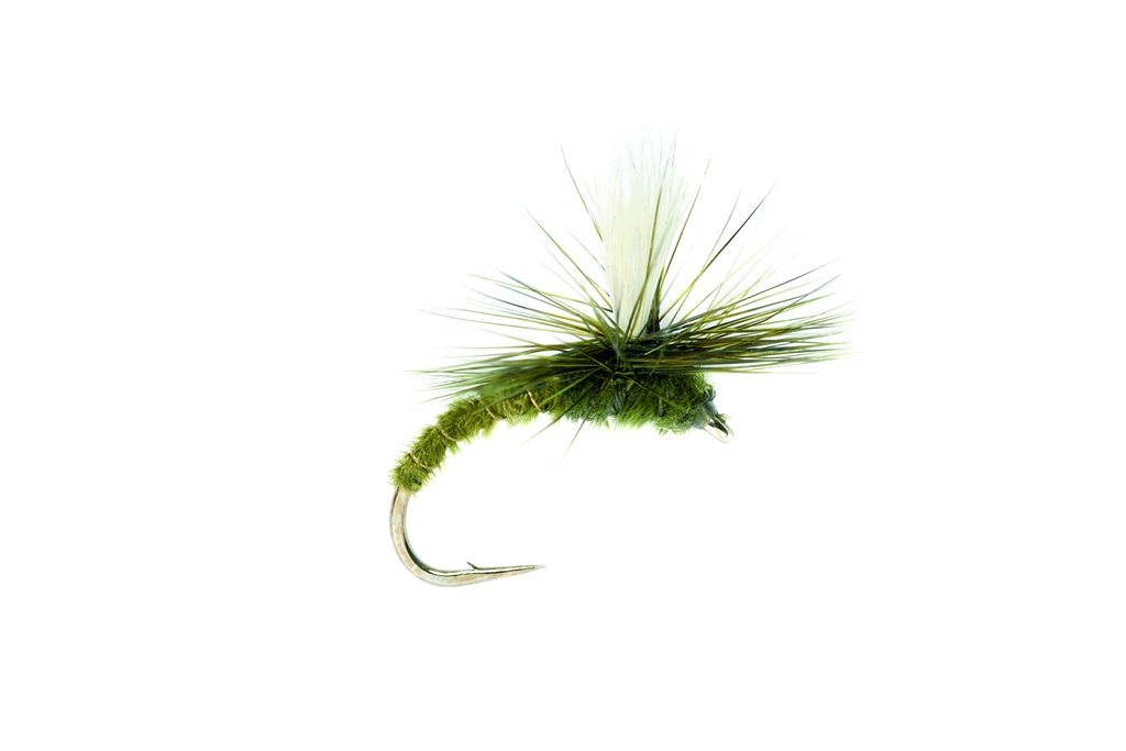 Emerger Parachute Olive