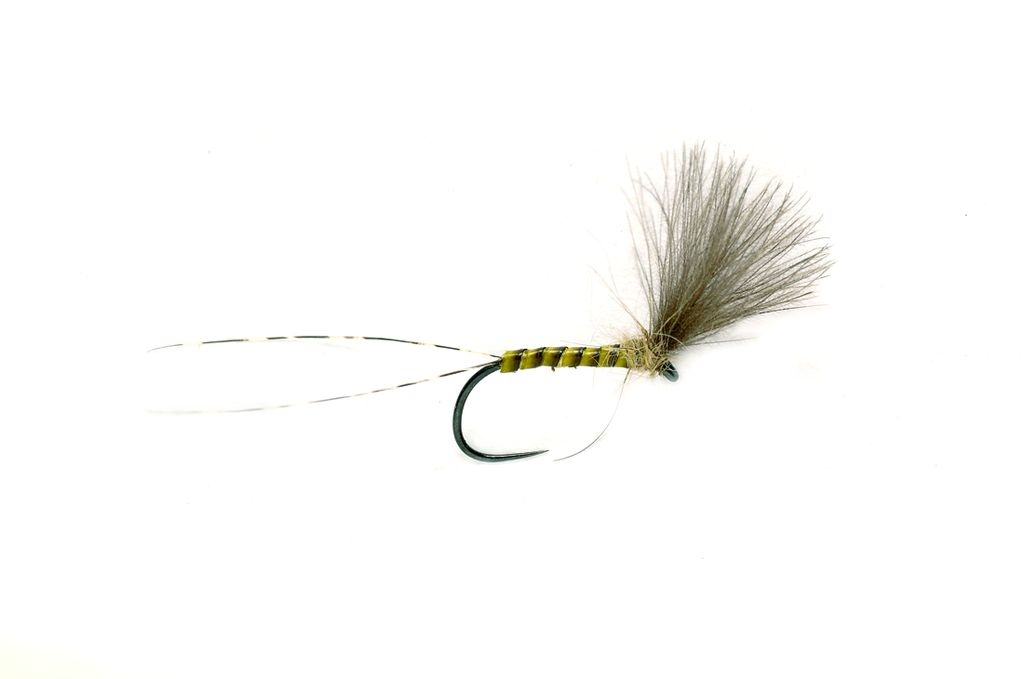 Quill Plume Tip Dry Barbless