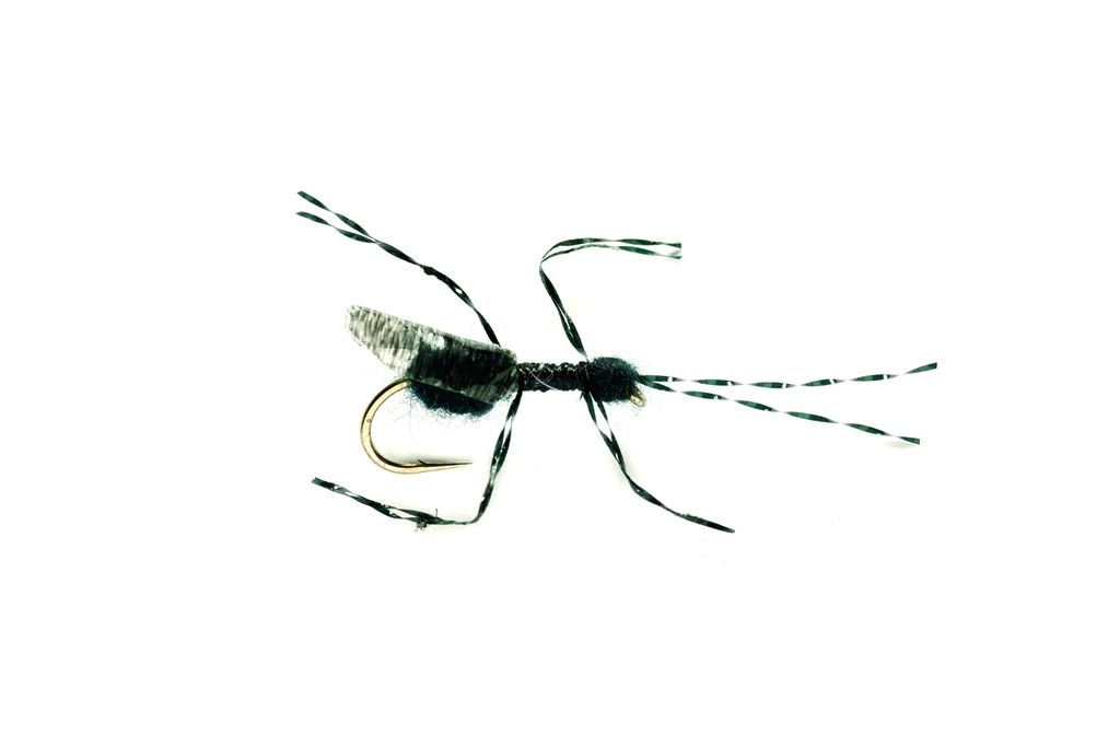 Bill's Black Flying Ant