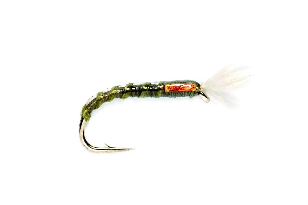 Buzzer Big Fish Olive