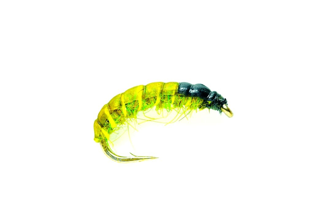 Czech Nymph Olive