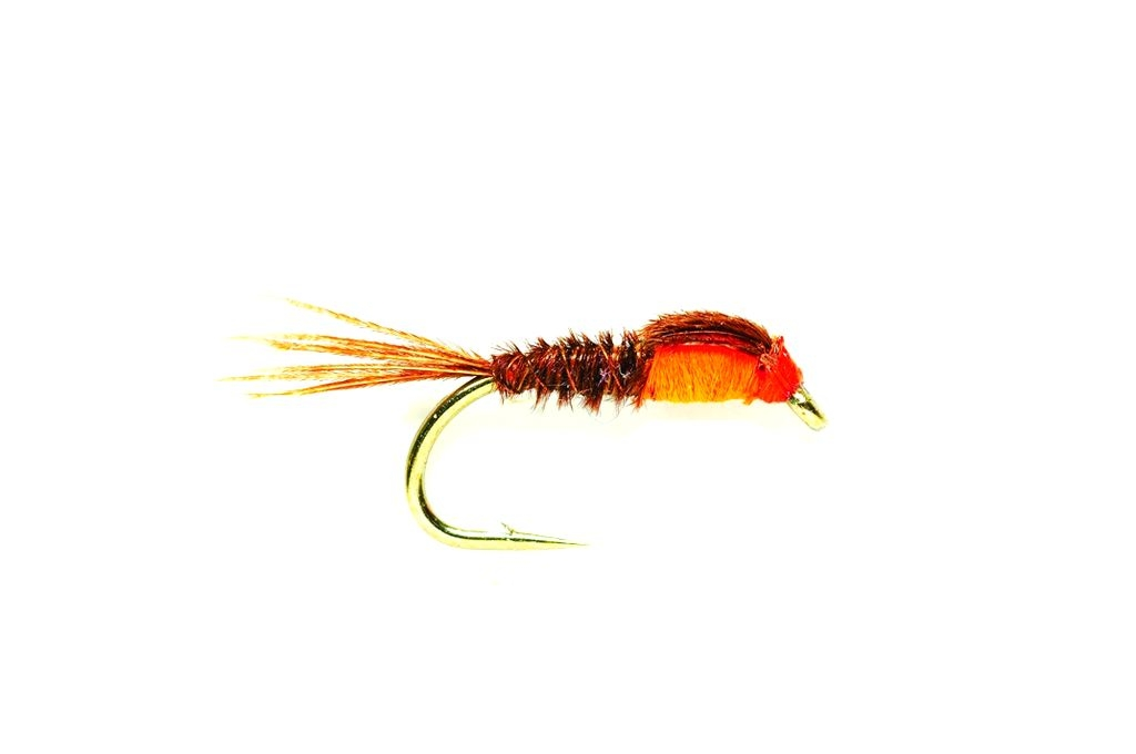 Pheasant Tail Orange Thorax
