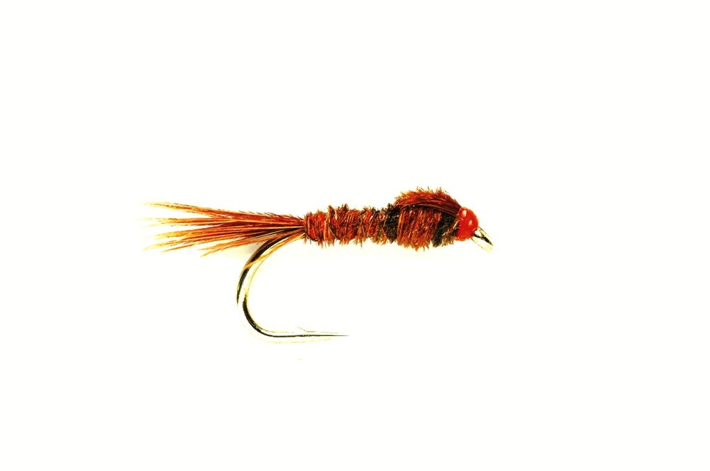 Pheasant Tail Sawyer