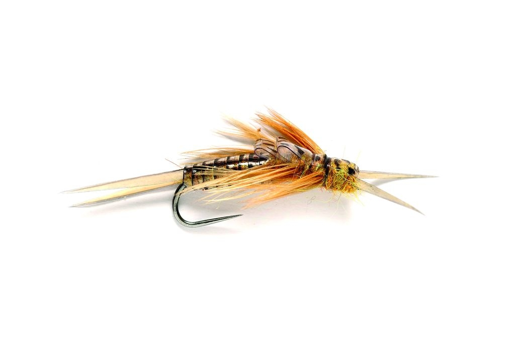 Golden Stonefly (OE) Barbless