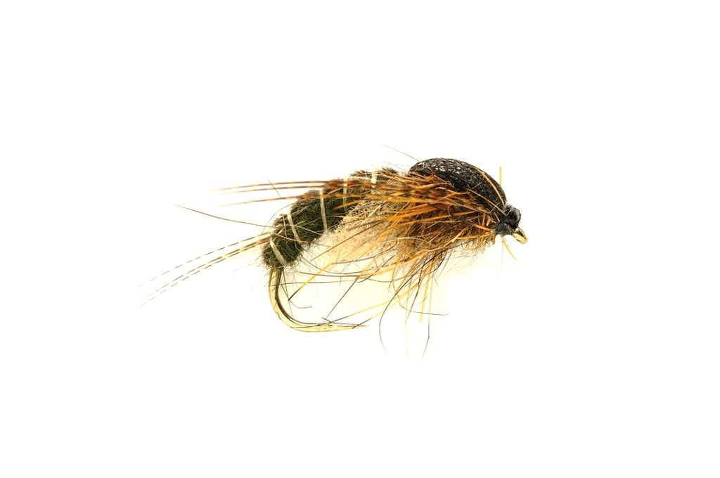 Sedge Dark Olive Hatching