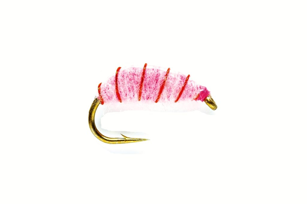 Flashback Pink Shrimp