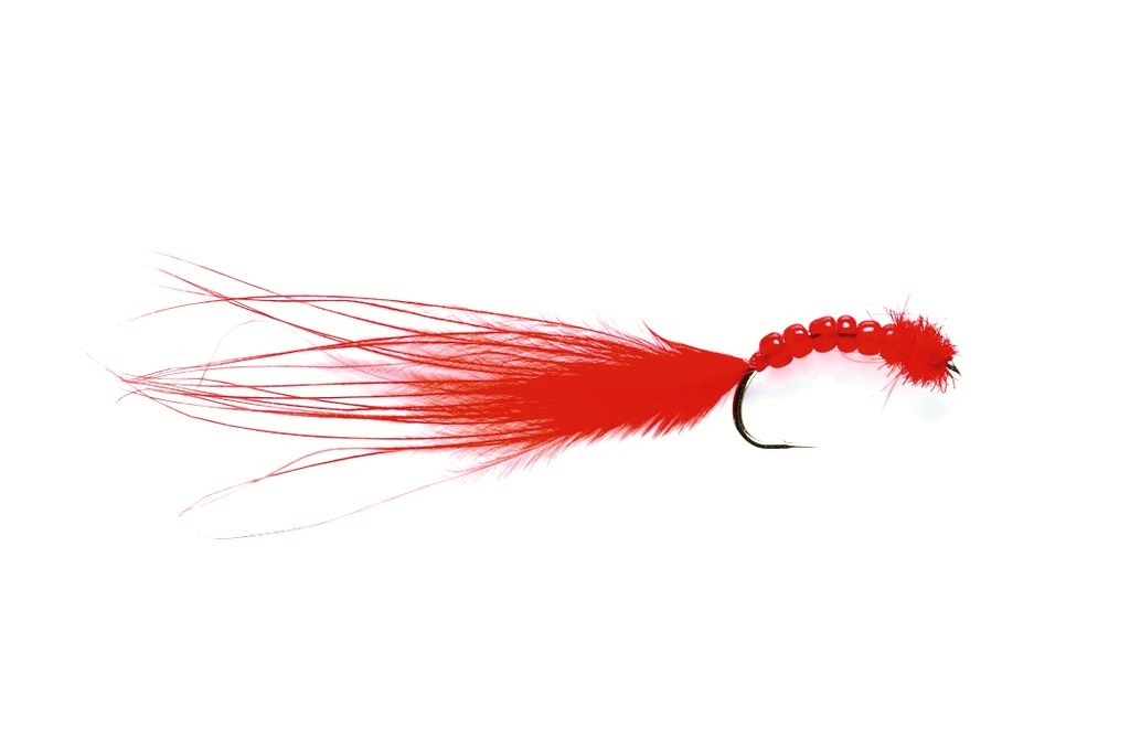 Bead Bug Bloodworm