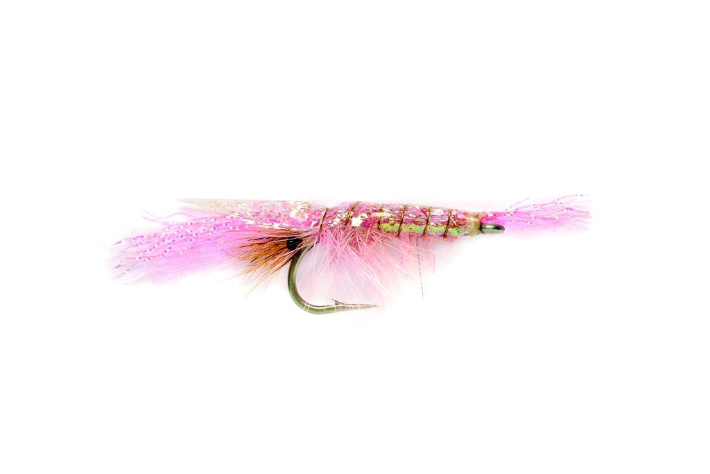 Flashback Shrimp Pink