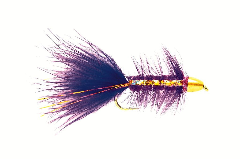 Golden Bullet Purple Flash