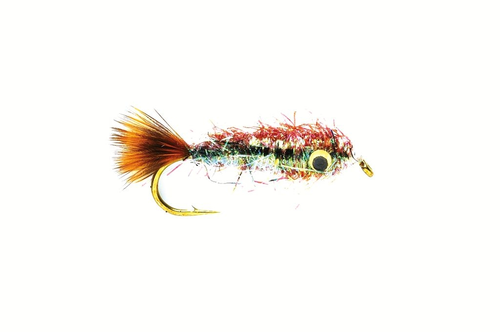 Minnow Brown Lite Brite