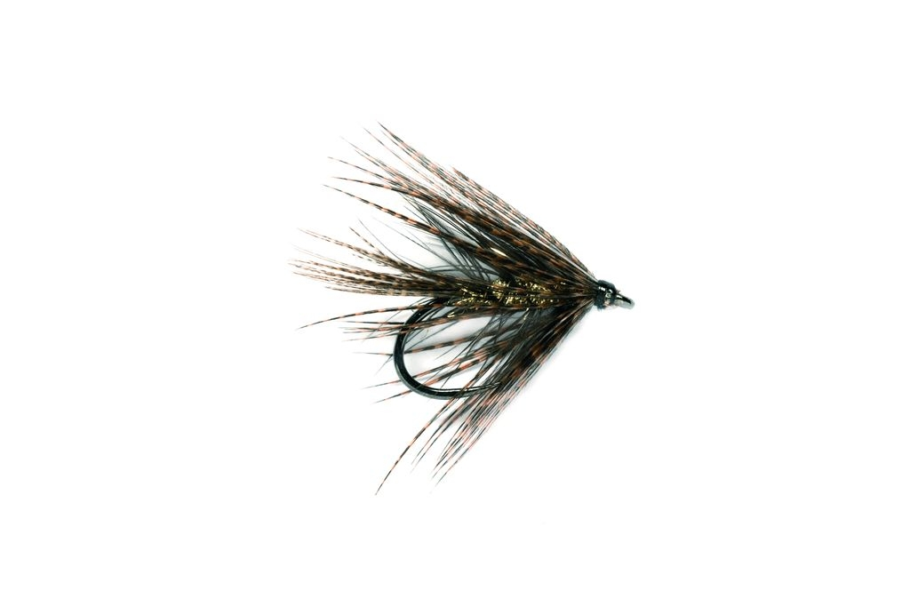 Dabbler Black & Gold