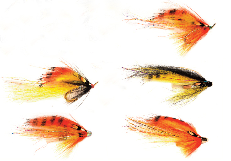 Tiger Tails Selection Pack