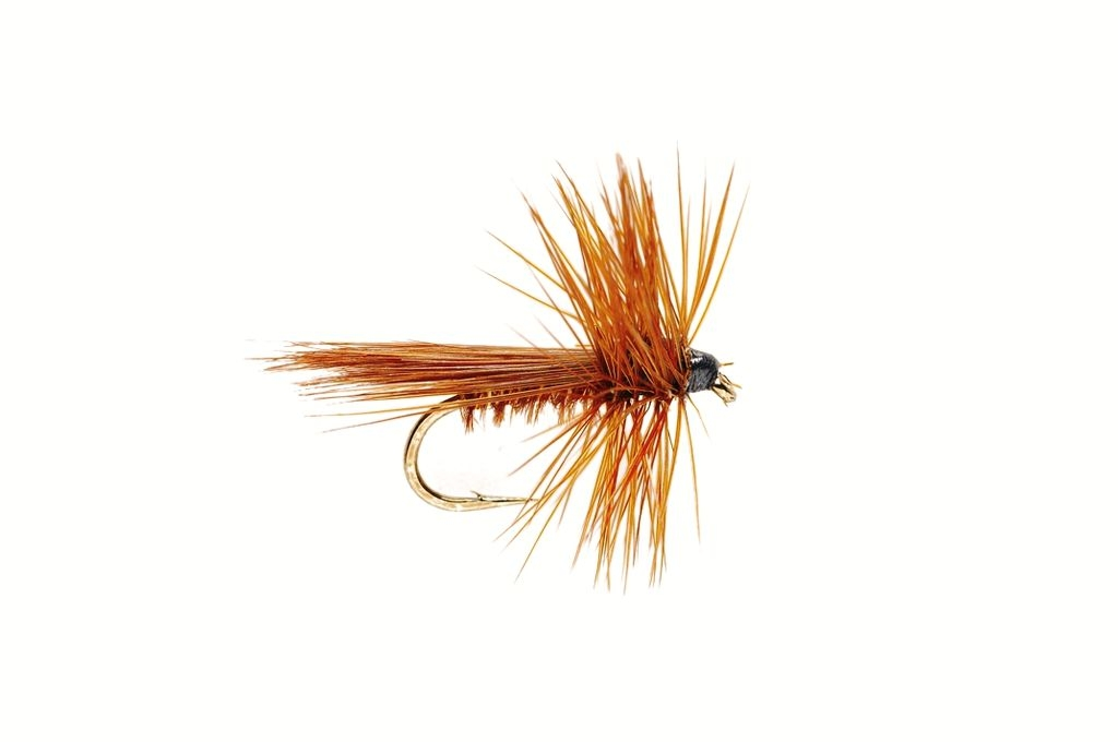 Caddis Brown Fluttering