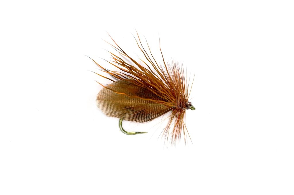Caddis Andrzejs Polish
