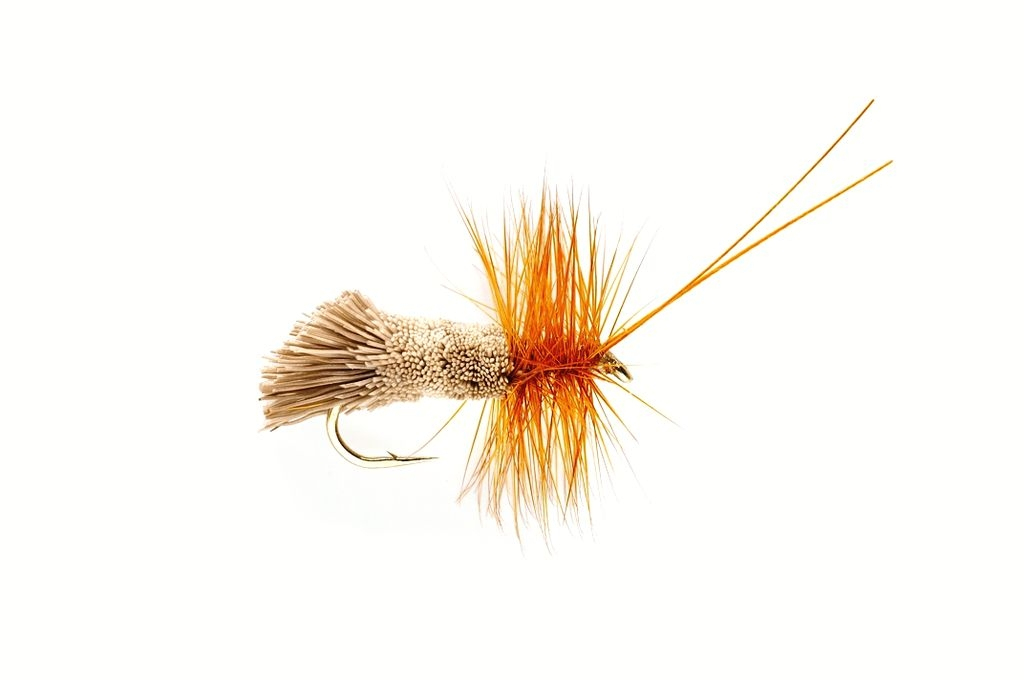 Sedge Goddard Natural
