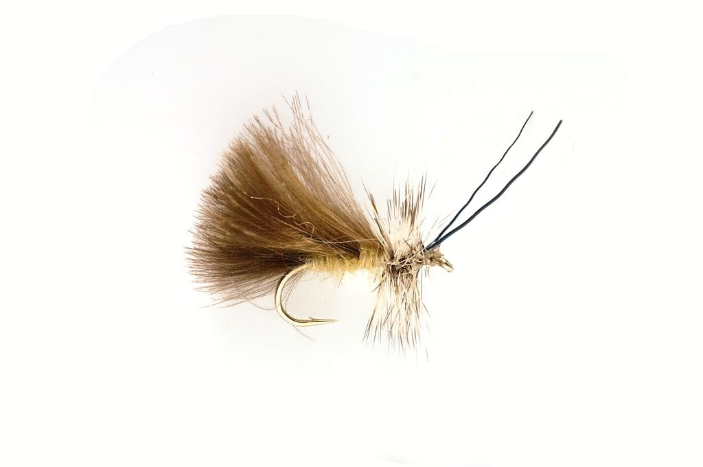 Sedge High Rider CdC Cream