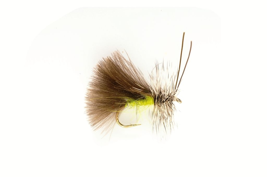 Sedge High Rider CdC Green
