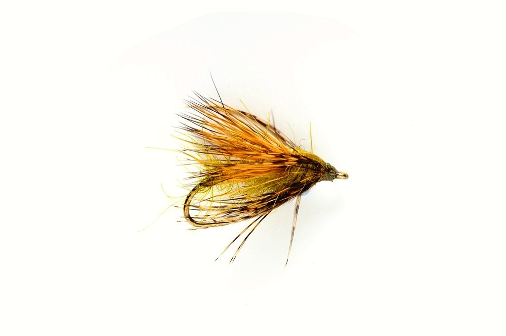 Davy's Skater Fiery Brown