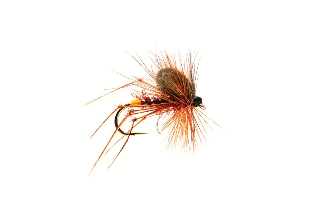 CdC Fiery Brown