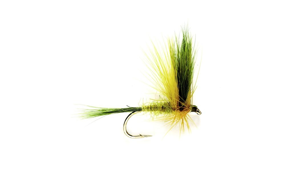 Mayfly Golden Olive Wulff