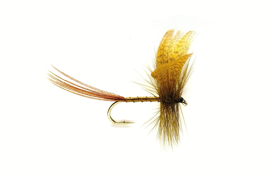 Mayfly Green Drake