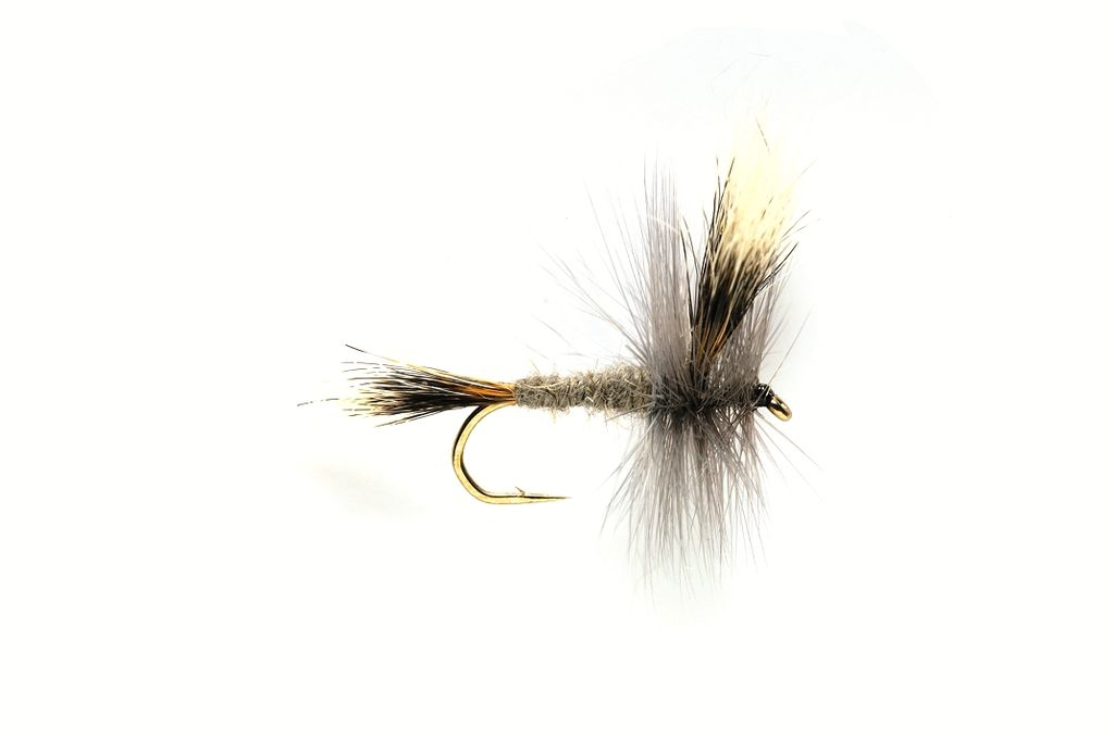 Mayfly Grey Wulff