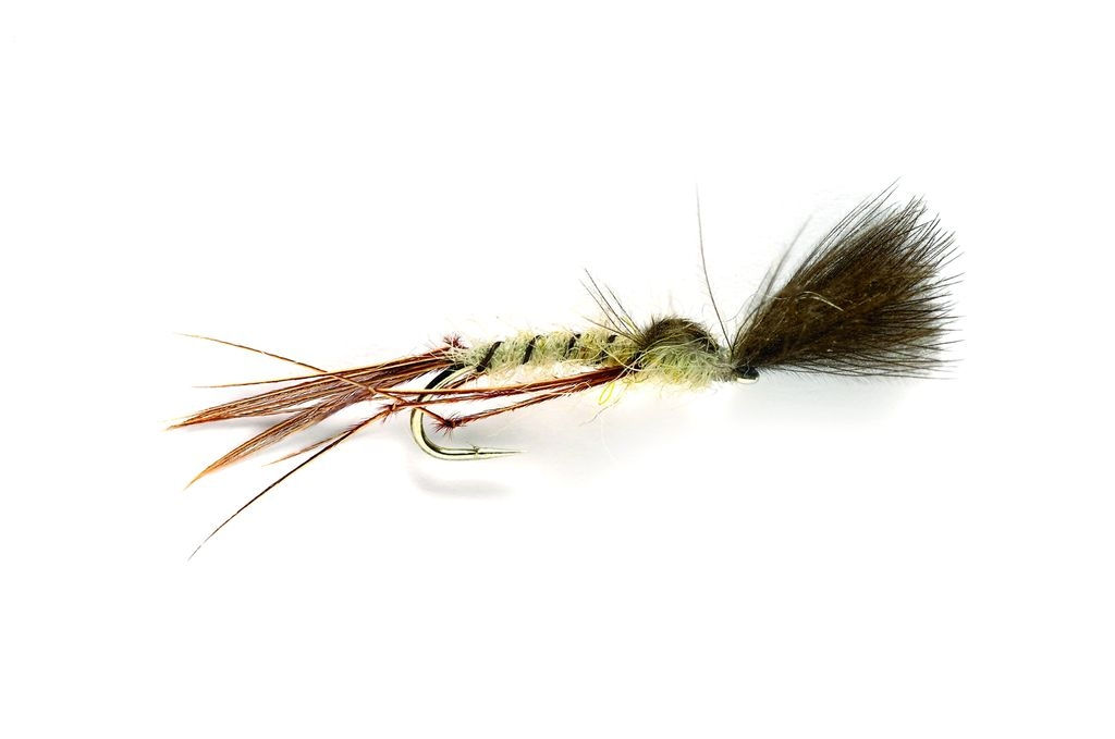 Mayfly Crippled