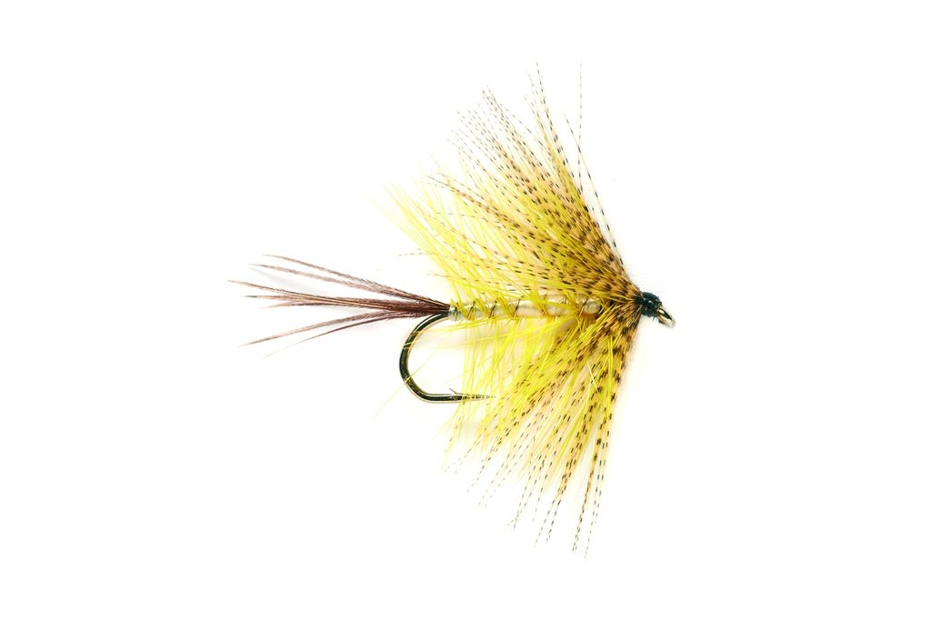 Mayfly Yellow
