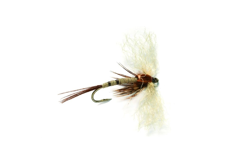 Spent Mayfly