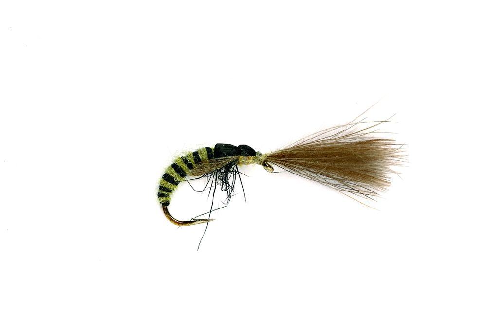 Grannom Pupa CdC Emerger